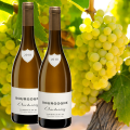 Alles over chardonnay!